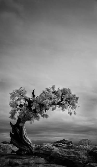 """Ethereal"", Moab 2015"